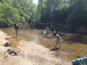 Creek Walk May 3